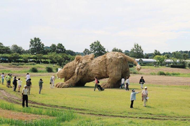 Tìm hiểu về lễ hội rơm ở Niigata Nhật Bản 4