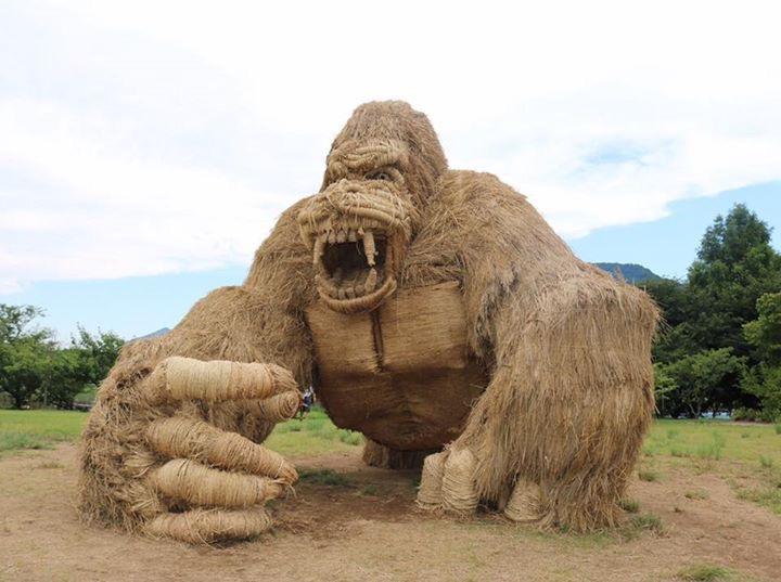 Tìm hiểu về lễ hội rơm ở Niigata Nhật Bản 3