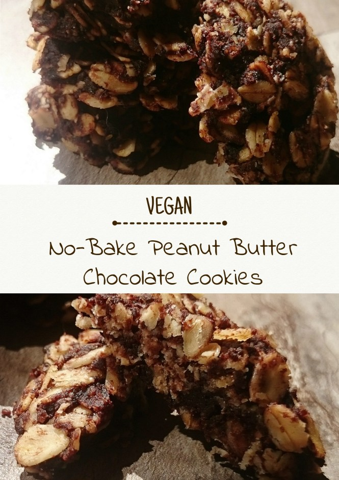 No-Bake Peanut Butter Chocolate Cookies2