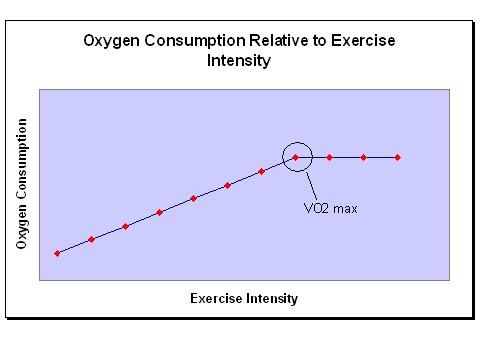 VO2 max graph