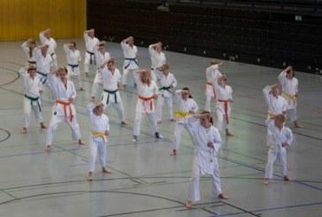 Karate ist weit mehr als nur zu schlagen und zu treten