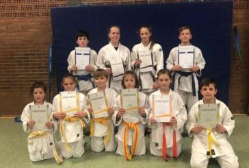 Mit neuen Gürtelfarben in die Osterferien – Eichengrün-Judoka werden für Trainingsfleiß belohnt