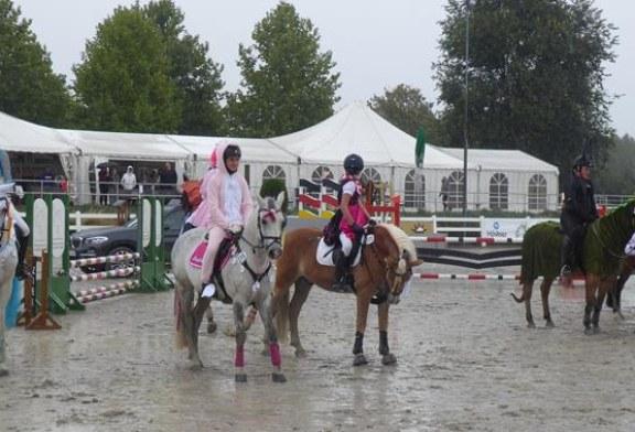 Regen trübt den letzten Turniertag im Reitsportzentrum Massener Heide