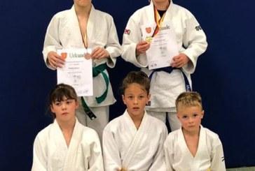 Medaillen für Eichengrün-Judoka auf Bezirksebene