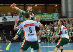 SC DHfK Leipzig vs. HSG Wetzlar - Handball Bundesliga - Foto: Rainer Justen