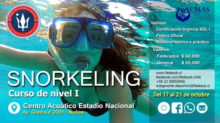 snorkeling-fedesub