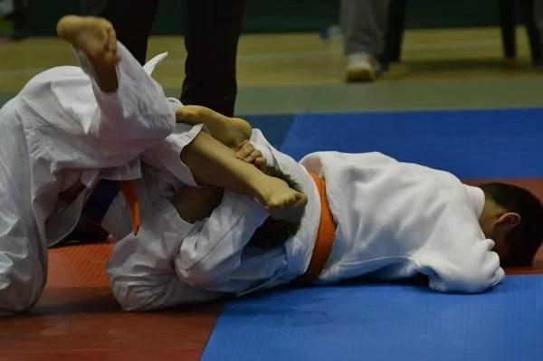Balița, singurul judoka arădean medaliat în Slovacia