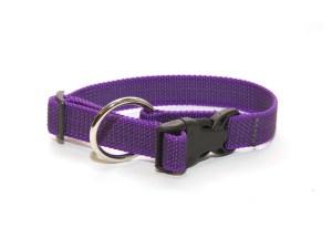 Ошейник из прорезиненной стропы 20 мм фиолетовый большое кольцо