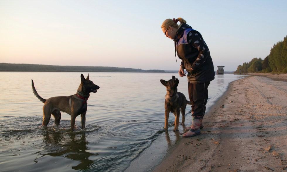 Обычная прогулка с собакой