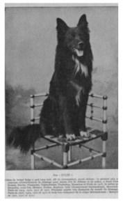 Jules du Moulin (Couplet, 1931)