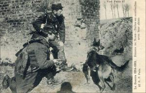 Французские солдаты с малинуа, 1914-15 гг.