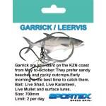 Trace-Garrick