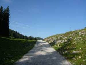 kurz vor der Riesenhütte - Blick auf Hochries