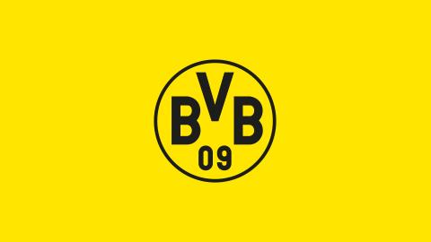 BVB Trikotreduzierung!
