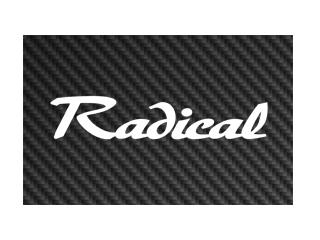 Radical-Logo-320x240px-wR