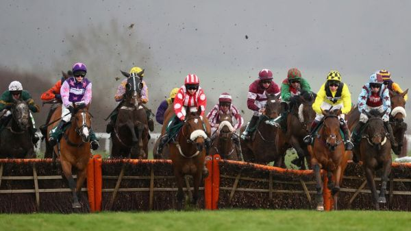 The County Hurdle field on Gold Cup day