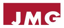 LOGO-JMG
