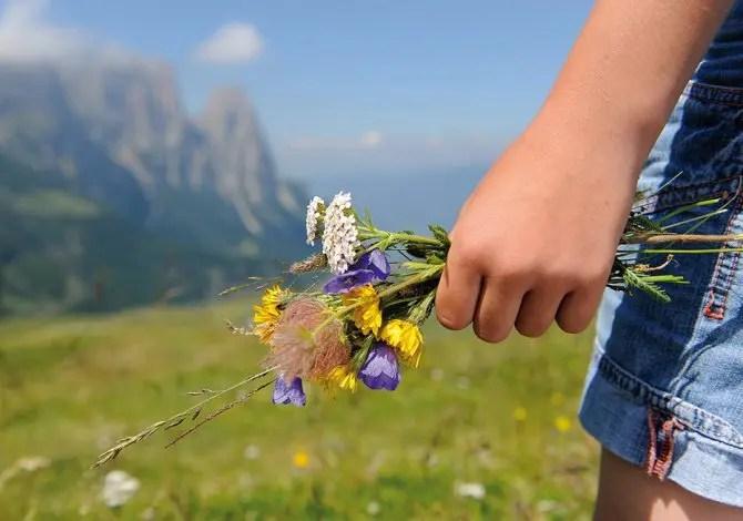 Dove andare (in vacanza) per scappare da pollini e allergie