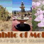 Repubblica di Molossia