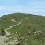 Monte Pennello