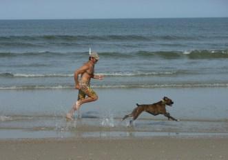 dog_corsa