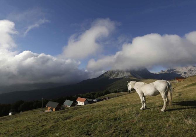 high-scardus-trail-trekking-balcani-cavallo