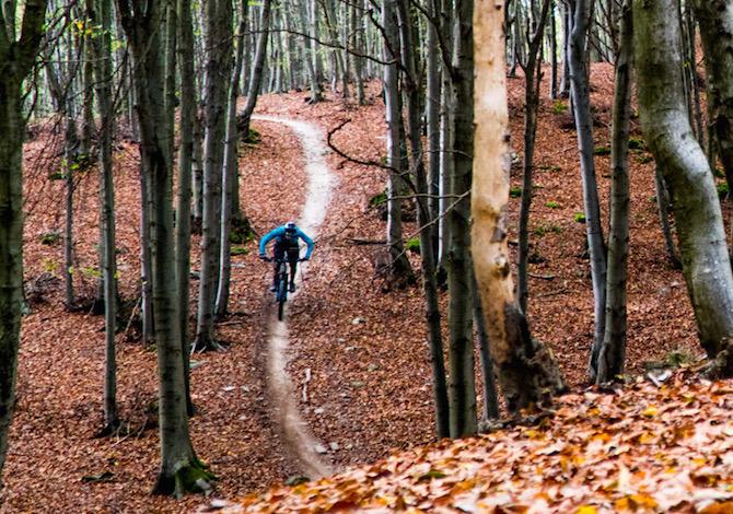 viaggi-bici-novembre-foliage