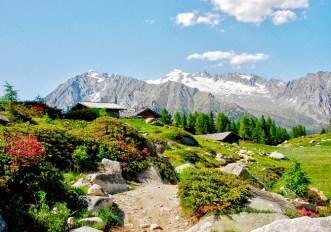 cammini in Trentino Alto Adige da fare anche a tappe