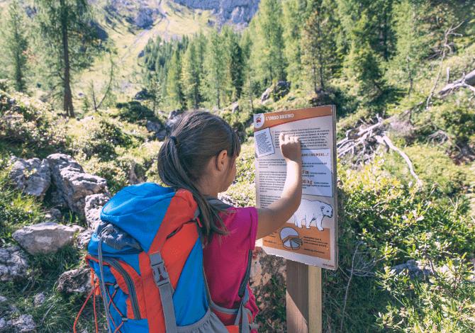 Alpe Lusia San Pellegrino: l'estate nelle Dolomiti tra cultura, sport e famiglia