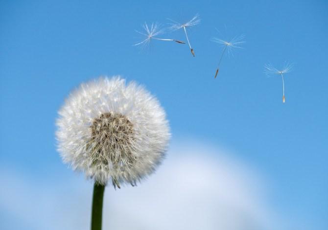 stanchezza-di-primavera-e-gli-altri-fastidi-come-affrontarli
