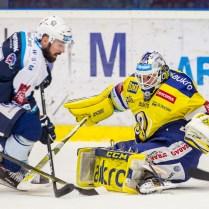 V neděli 26. listopadu 2017 se v plzeňské Home Monitoring Aréně odehrál hokejový zápas 26. kola TipSport Extraligy ledního hokeje mezi celky HC Škoda Plzeň a Aukro Berani Zlín. ROMAN TUROVSKÝ