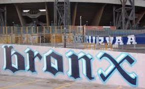 20120216_bronx