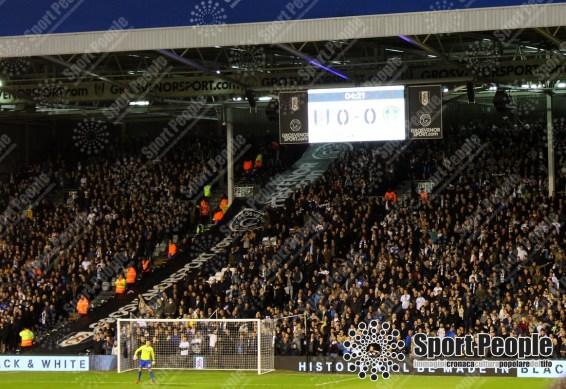 Fulham-Leeds (10)