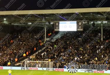 Fulham-Leeds (13)