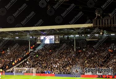 Fulham-Leeds (14)