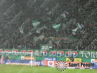 Rapid Vienna-LASK Linz (7)
