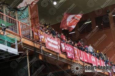 Sampdoria-Torino (2)