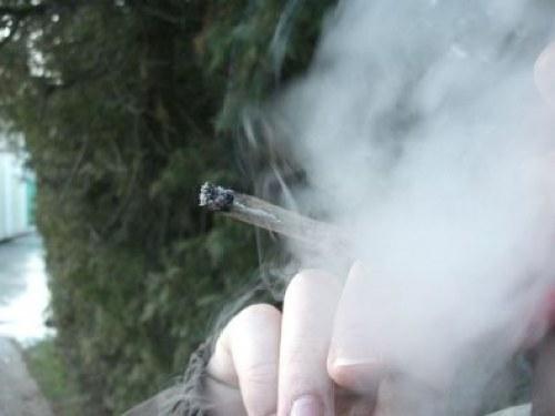 weedjoint_and_smoke-thumb-500x375