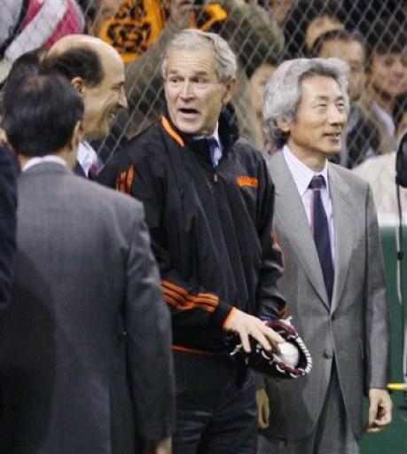 Japan Baseball Bush