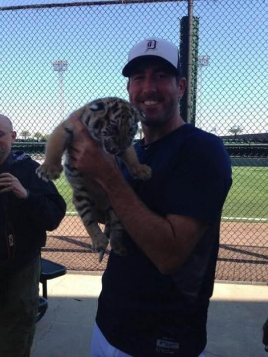 justin-verlander-tiger-cub