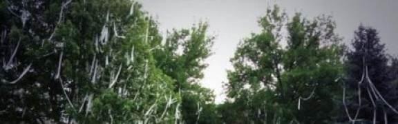 joel-quenneville-home-teepee-crop