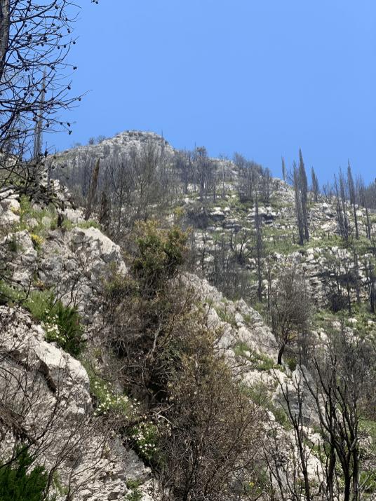 laufen-almalfi-trails-trailrunning-Pfad-der-Goetter-5