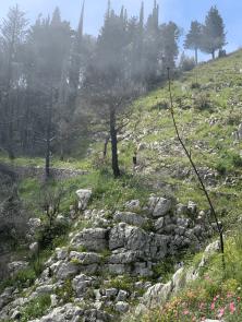laufen-almalfi-trails-trailrunning-Pfad-der-Goetter-6