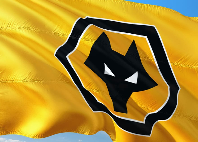 Wolves boss Nuno looking to develop a 'youthful' squad