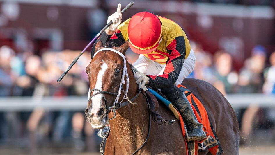 horse Basin Kentucky Derby Odds