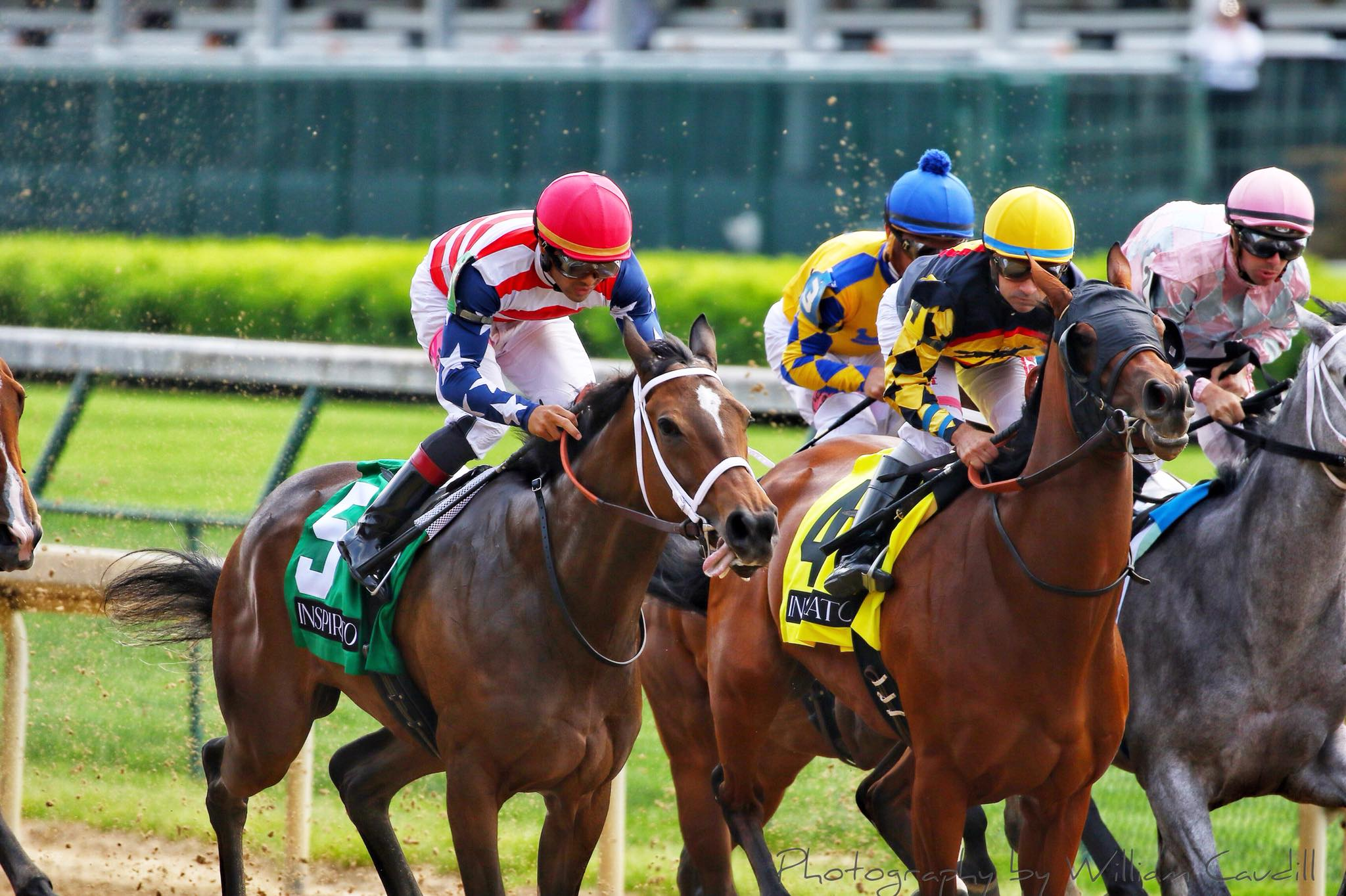 Horse Race History Highest Payout Odds