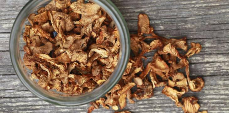 Types Of Dried Mushrooms