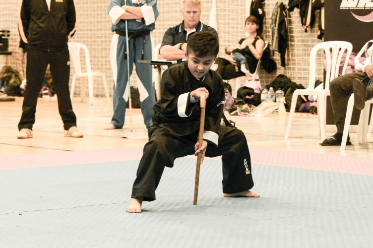Martial-Arts-WC-2015-1358