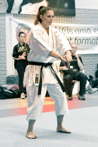 Martial-Arts-WC-2015-1497
