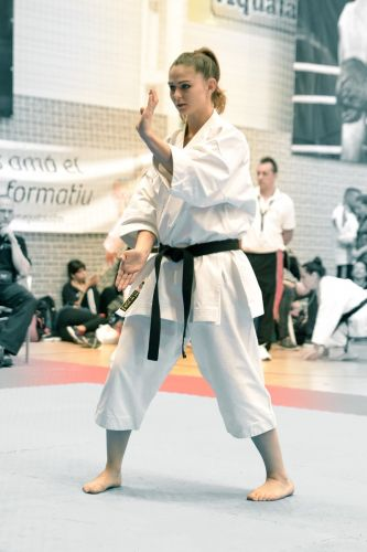 Martial-Arts-WC-2015-1504